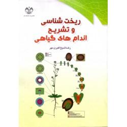 کتاب ریخت شناسی و تشریح اندام های گیاهی اثر رضای شیخ اکبر مهر نشر دانشگاه قم